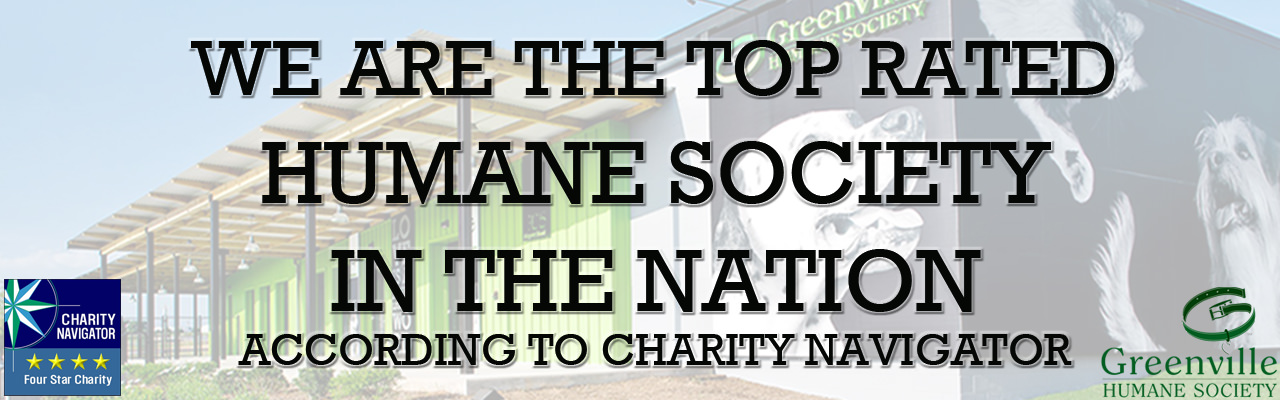 Number-One-Humane-Society-Web-SLider